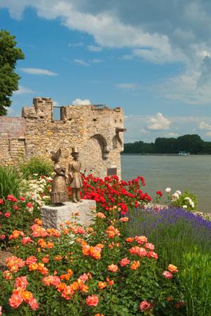 Rosenstadt--Eltville