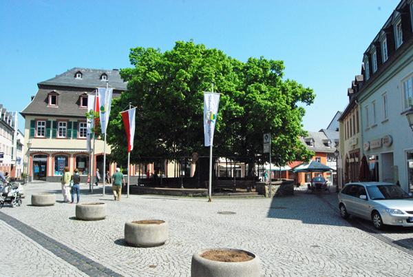 Geisenheim5