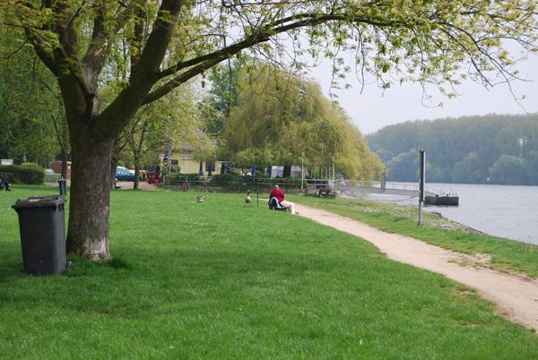 Hattenheim-Rheinufer