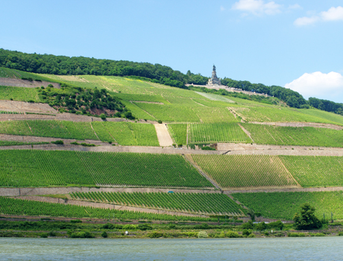 Niederwalddenkmal-panorama