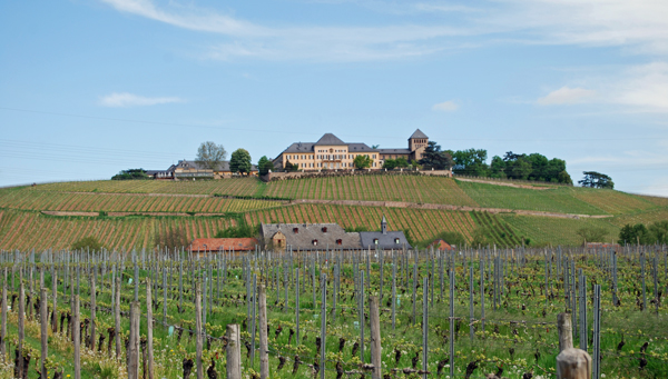 Schloss-Johannisberg-perspe