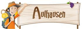 Aulhausen