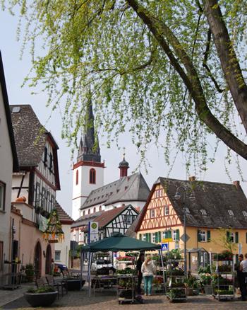 Der noch leere Festplatz / Marktplatz in Erbach