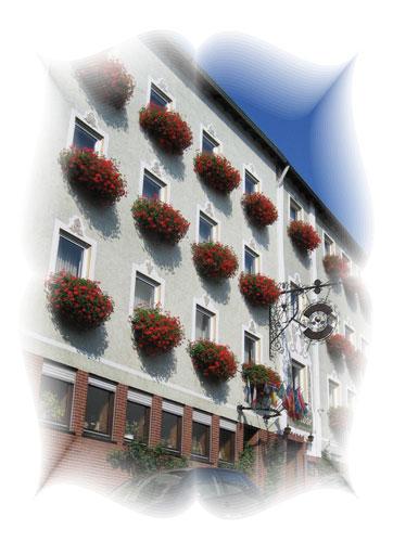 hotel-rose